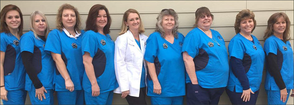 Cypress Creek Veterinary Hospital Team